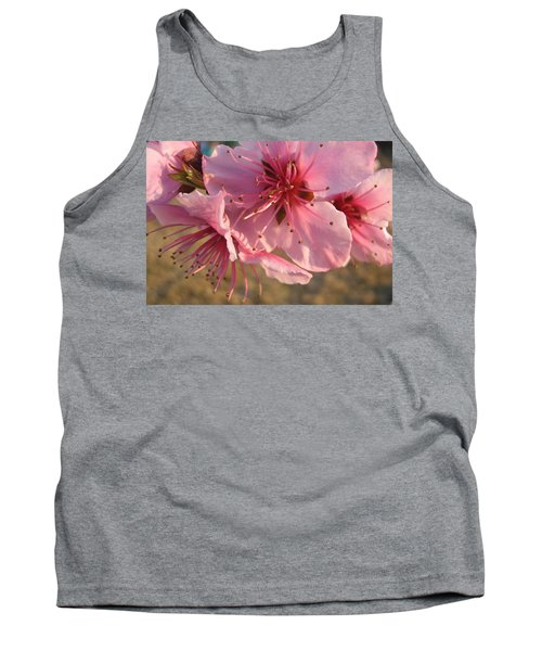 Pink Blossoms Tank Top