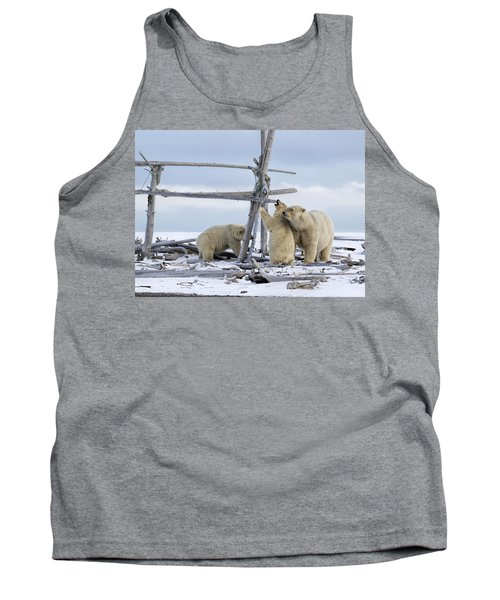 Playtime In The Arctic Tank Top