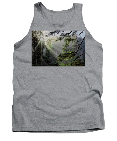 Morning Rays Through An Oregon Rain Forest Tank Top