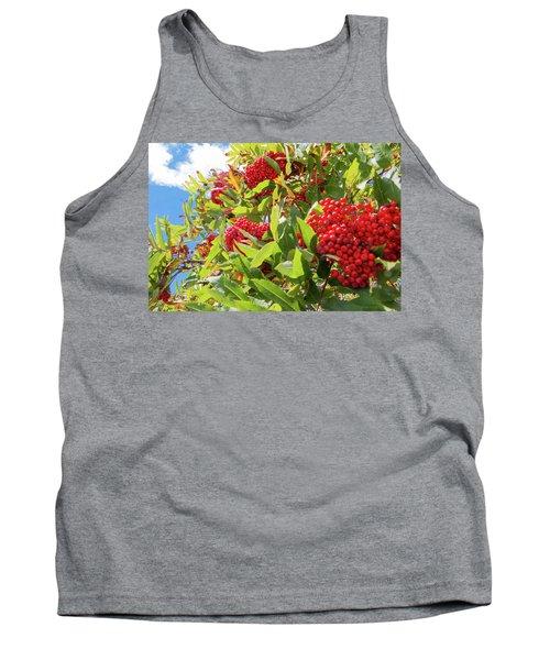 Red Berries, Blue Skies Tank Top