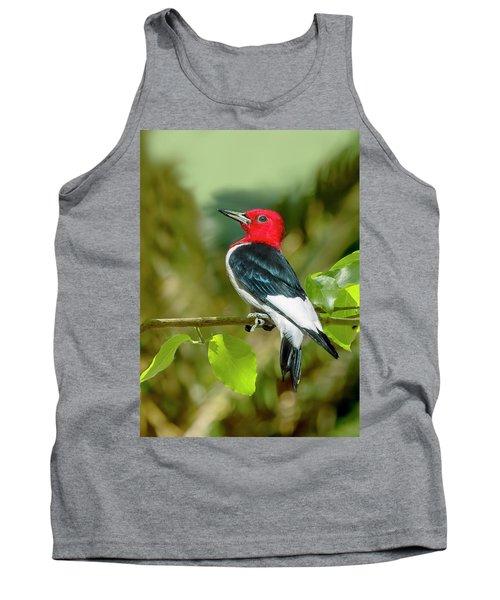 Red-headed Woodpecker Portrait Tank Top