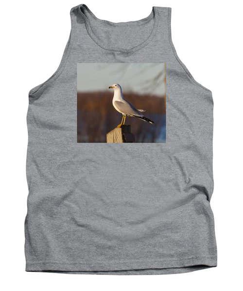 Ring Billed Gull Tank Top