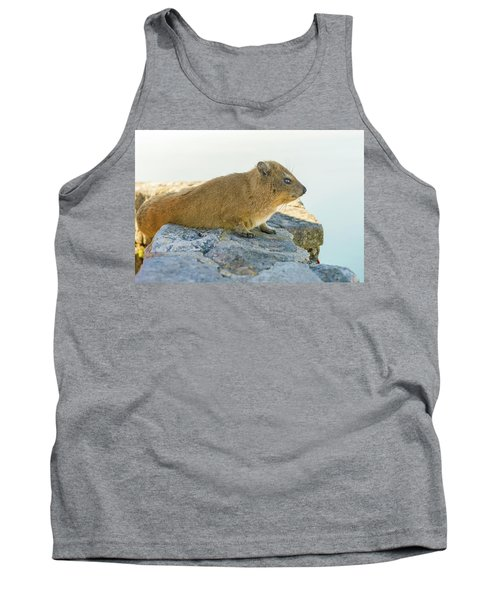 Rock Hyrax On Table Mountain Cape Town South Africa Tank Top by Marek Poplawski