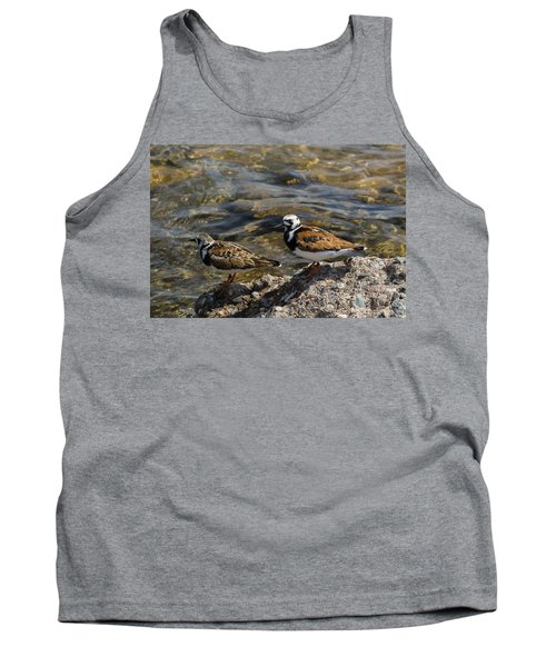 Ruddy Turnstone Tank Top