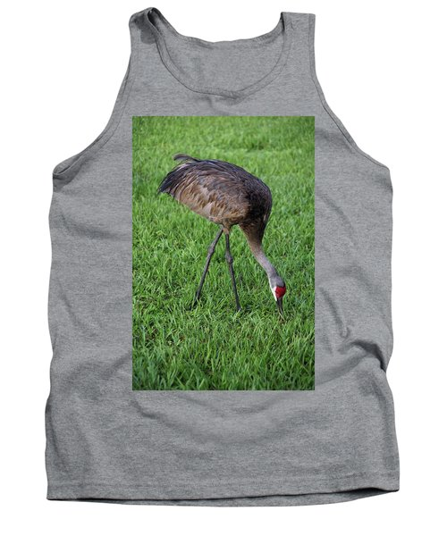 Sandhill Crane II Tank Top by Richard Rizzo