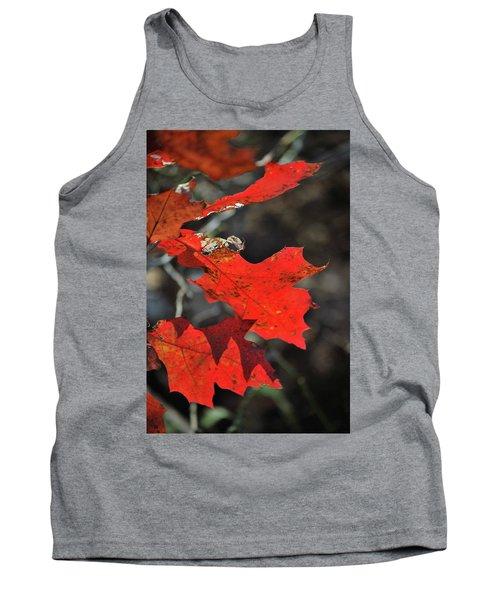 Scarlet Autumn Tank Top