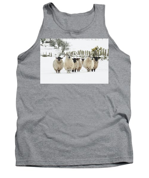Sheep In Snow Tank Top