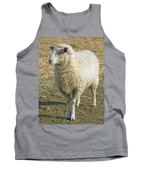 Sheep Tank Top by James Larkin