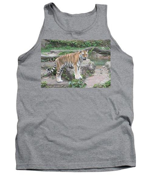 Siberian Tiger Tank Top