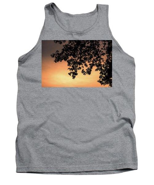 Silhouette Tree In The Dawn Sky Tank Top