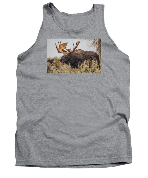 Tank Top featuring the photograph Silly Moose  by Kelly Marquardt
