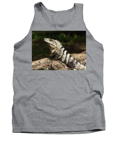Sir Iguana Mexican Art By Kaylyn Franks Tank Top