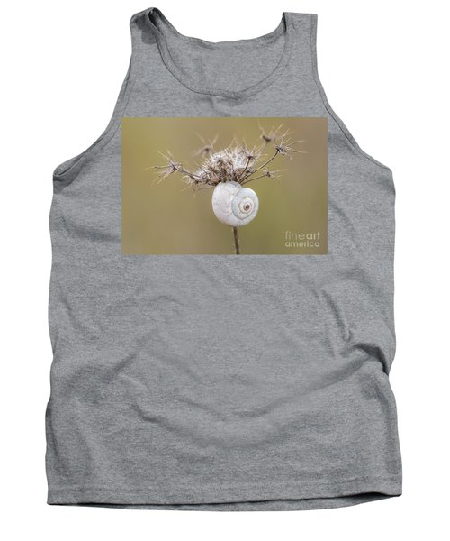 Small Snail Shell Hanging From Plant Tank Top by Gurgen Bakhshetsyan