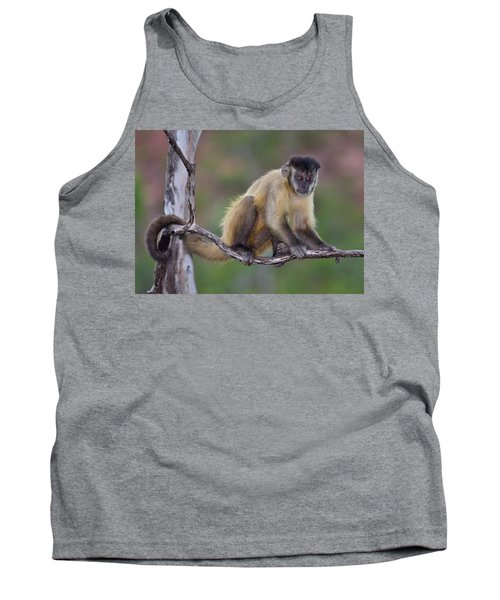Tank Top featuring the photograph Smarty Pants by Tony Beck