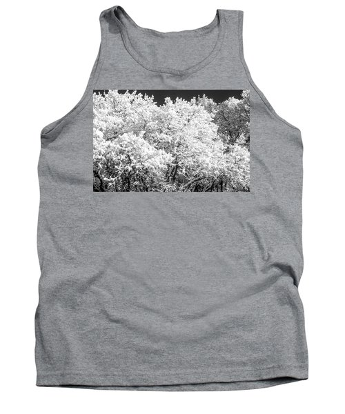 Snow And Frost On Trees In Winter Tank Top by John Brink
