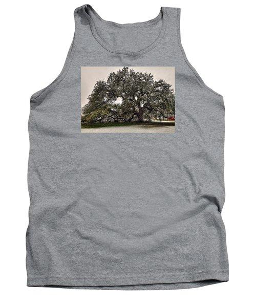 Snowfall On Emancipation Oak Tree Tank Top by Jerry Gammon