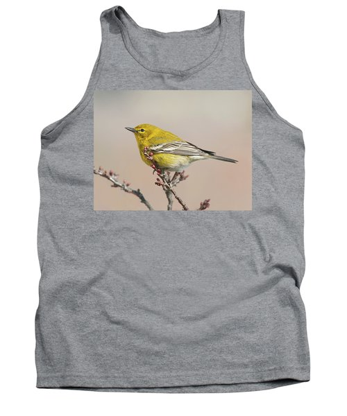Spring Warbler 1 2017 Tank Top