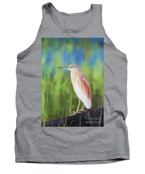 Squacco Heron Ardeola Ralloides Tank Top