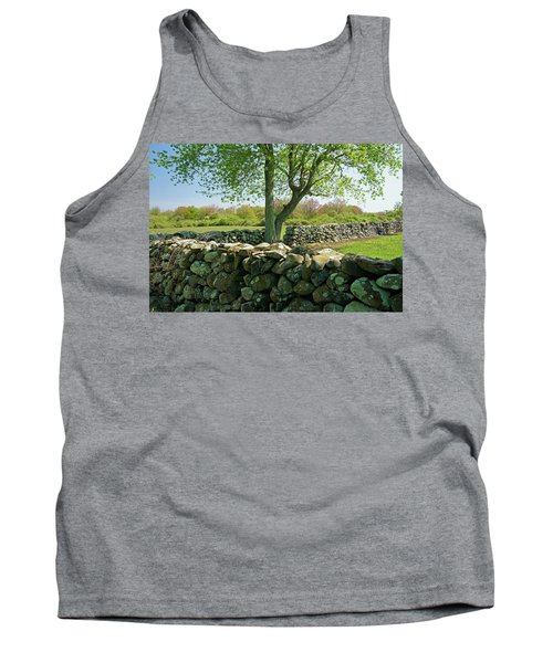Stone Wall In Rhode Island Tank Top