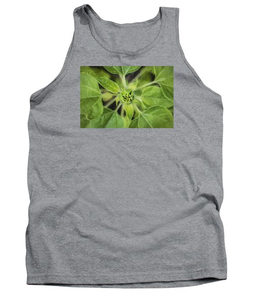 Sunflower Helianthus Giganteus Painted Tank Top by Rich Franco