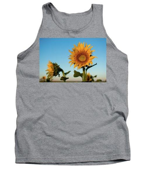 Sunflowers At Sunrise 1 Tank Top