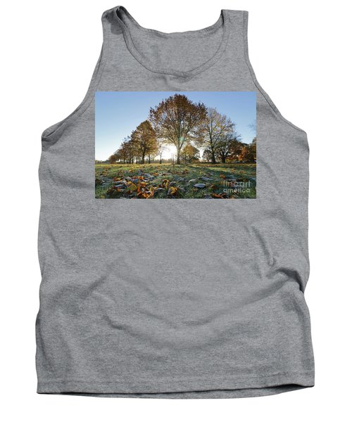 Sunrise Through Lime Trees Tank Top