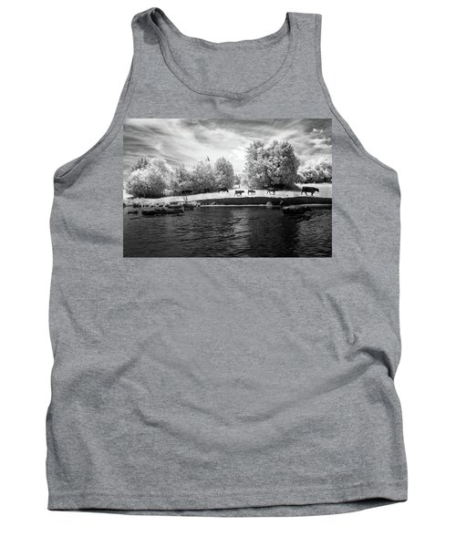 Swimming With Cows Tank Top by Paul Seymour