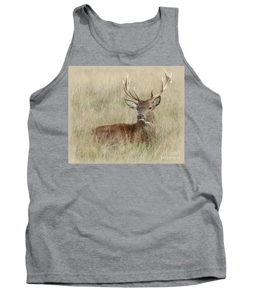 Tank Top featuring the photograph The Gentle Stag by LemonArt Photography