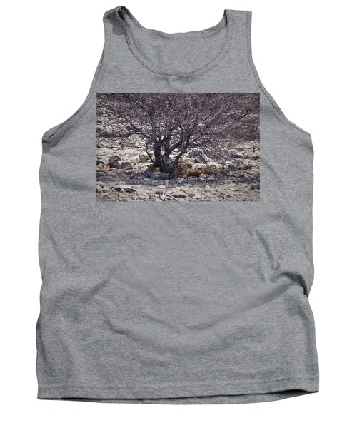 Tank Top featuring the photograph The Lion Family by Ernie Echols