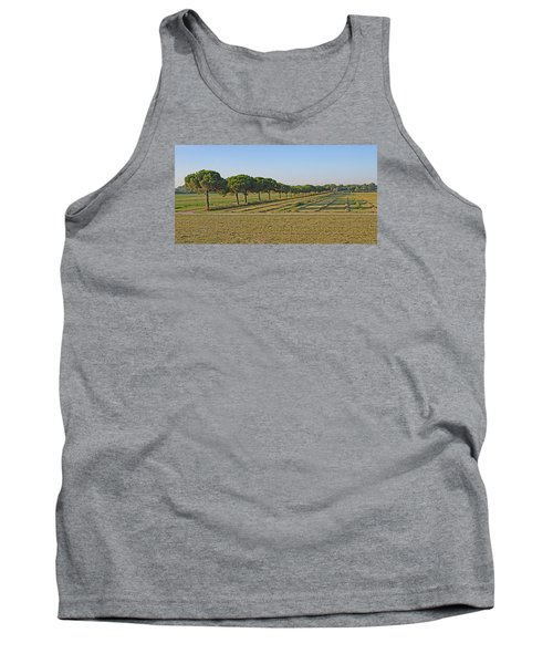 The Source Of Pine Nuts  Tank Top by Allan Levin