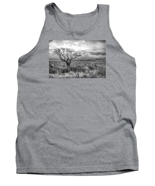 The Windswept Tree Tank Top