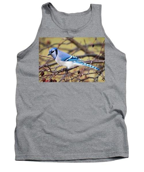 The Winter Blue Jay  Tank Top