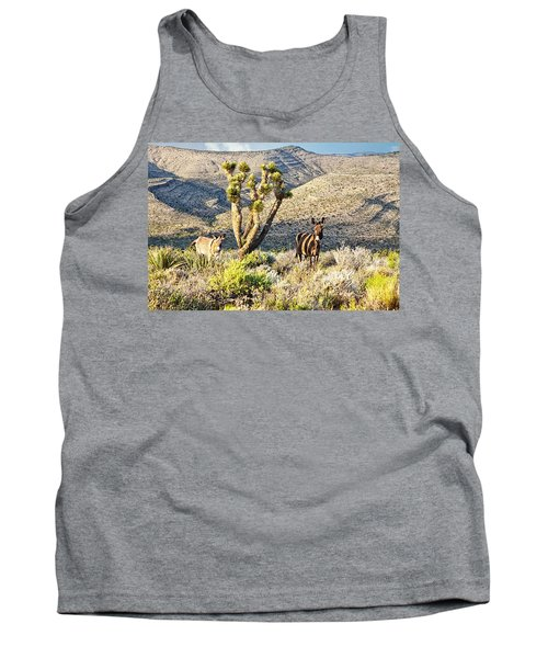 The Zebra Burro Tank Top
