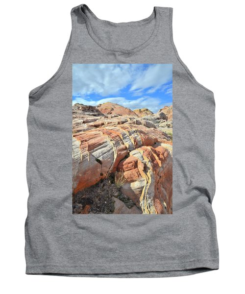 Tiger Stripes In Valley Of Fire Tank Top by Ray Mathis