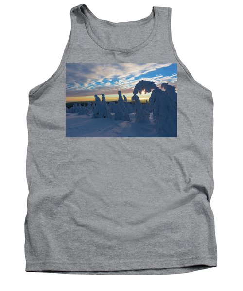 Touched From The Winter Sun Tank Top