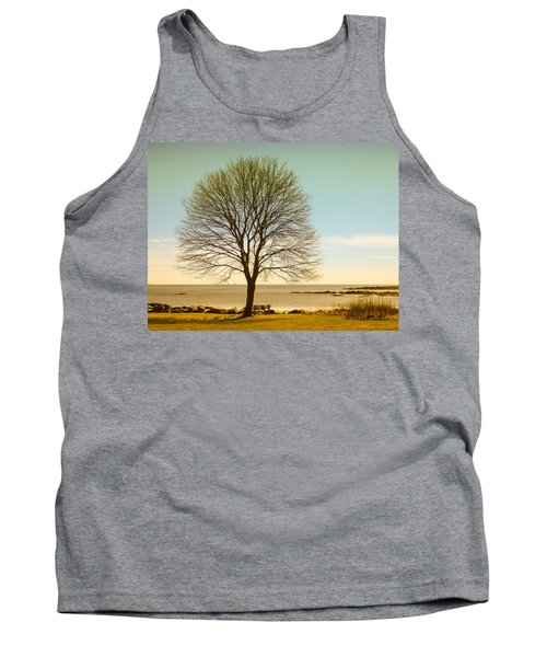 Tree At New Castle Common Tank Top