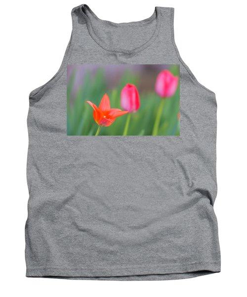 Tulips In My Garden Tank Top by Rainer Kersten
