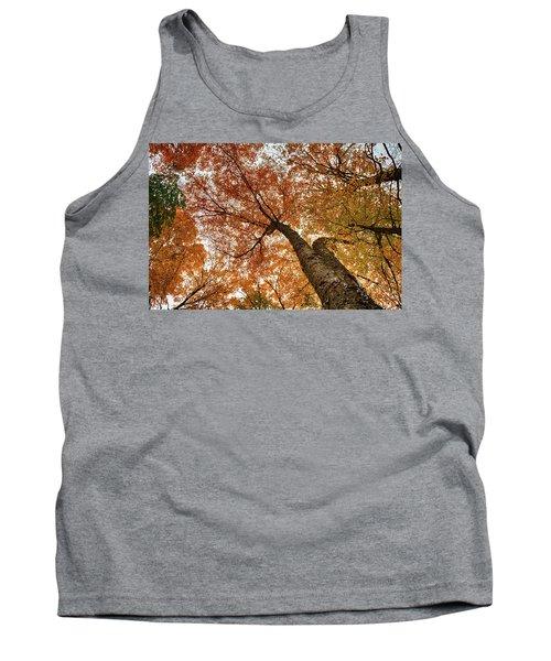Vermont Fall Foliage Views Tank Top