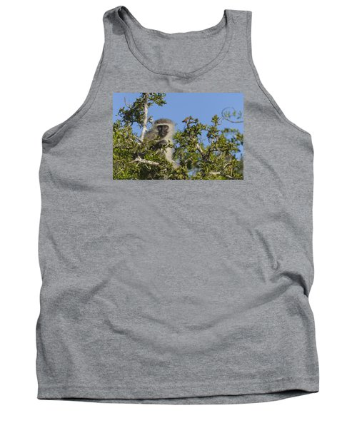 Vervet Monkey Perched In A Treetop Tank Top