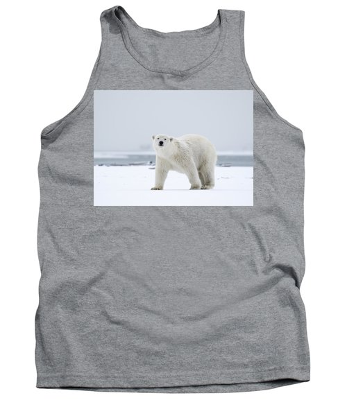 Watchful In The Arctic Tank Top