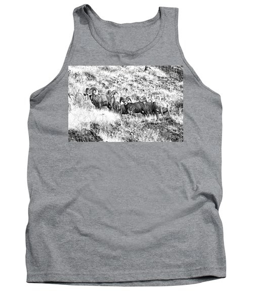 We Have A Visitor Tank Top by Steve Warnstaff