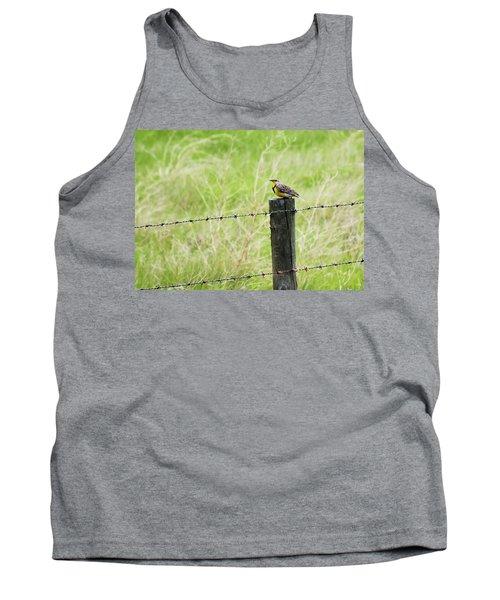 Western Meadowlark Tank Top
