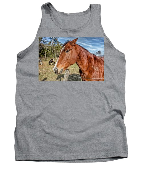 Tank Top featuring the photograph Wild Horse In Smoky Mountain National Park by Peter Ciro