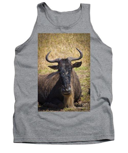 Wildebeest Taking A Break Tank Top by Darcy Michaelchuk