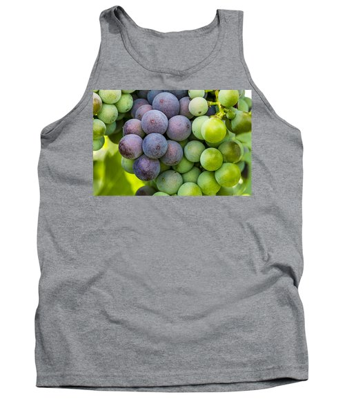 Wine Grapes Close Up Tank Top