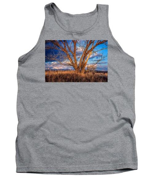 Winter Cottonwood Ranch Landscape Colorado Tank Top