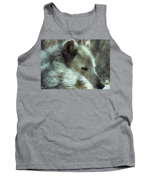 Wolf At Rest Tank Top