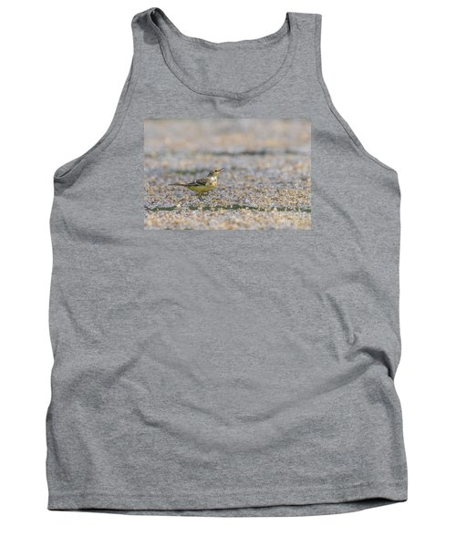 Tank Top featuring the photograph Yellow Crowned Wagtail Juvenile by Jivko Nakev