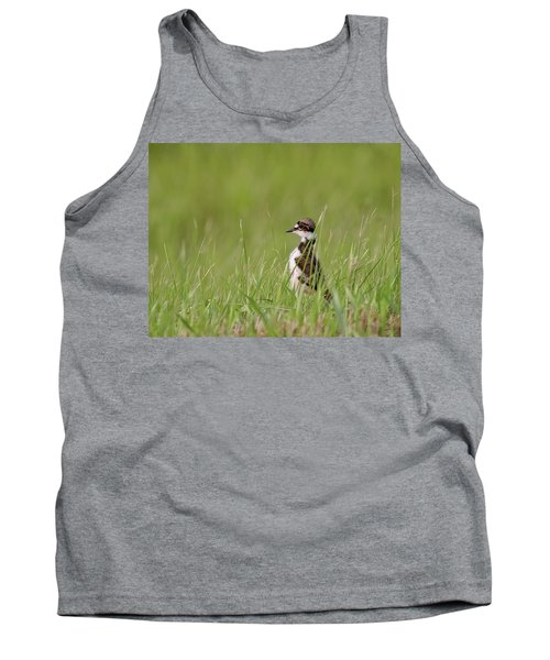 Young Killdeer In Grass Tank Top by Mark Duffy