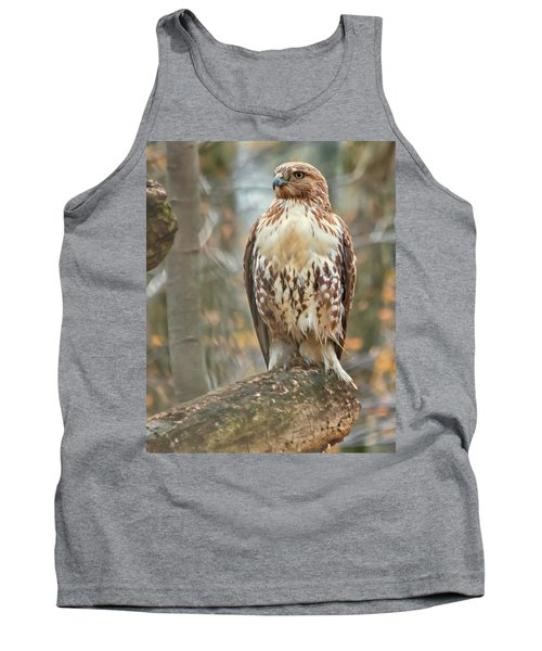 Young Red Tailed Hawk  Tank Top